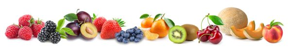 LC-fruitsberries_top10_2-1600x270.jpg